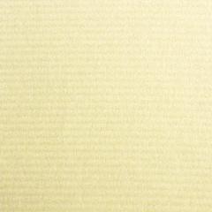 日本粉彩紙002A 米黃色150P/31×43